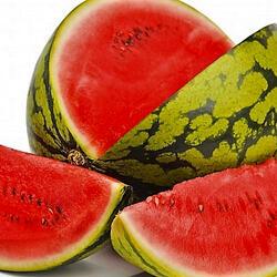 Meloun vodní 'Crimson Sweet' - Citrullus lanatus 'Crimson Sweet'