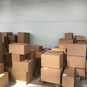 Krabice předáme dopravci, který je za 24–48 hodin doručí k vaším dveřím. 99,8 % rostlin doručíme v pořádku a nepoškozené. A pokud se přece jen něco nepovede, poskytujeme garanci výměny zdarma.