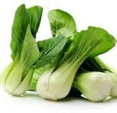 Čínské zelí 'Pak Choi' - Brassica chinensis 'Pak Choi'