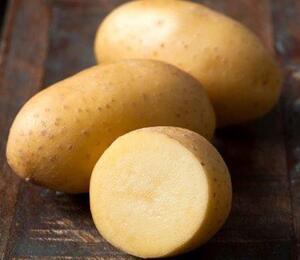 Lilek brambor 'Adessa F1' - Solanum tuberosum 'Adessa F1'
