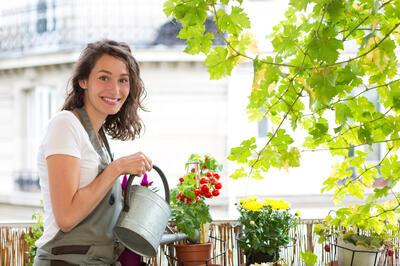 pěstování zeleniny na balkoně_žena zalévá rajčata STŘEDNÍ