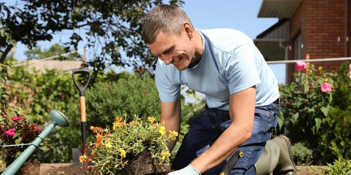 vesely zahradnik sazi letnicky